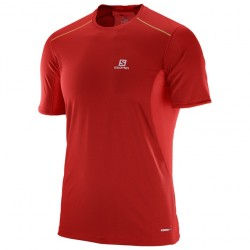 Salomon Camiseta Trail Runner SS Tee M L39385400
