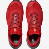 Salomon Sense Ride 3 Goji Berry